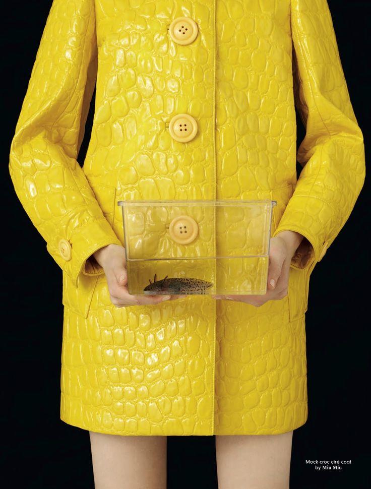 Coat by MIu Miu