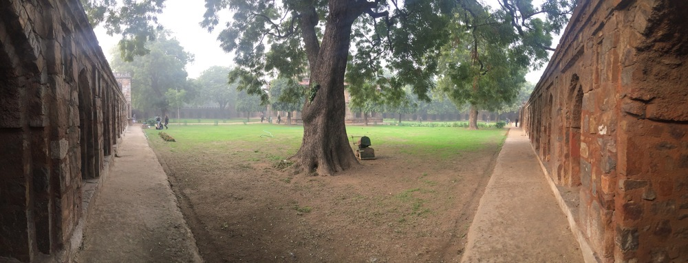 I took this photo somewhere in Lodhi Gardens, in New Delhi.