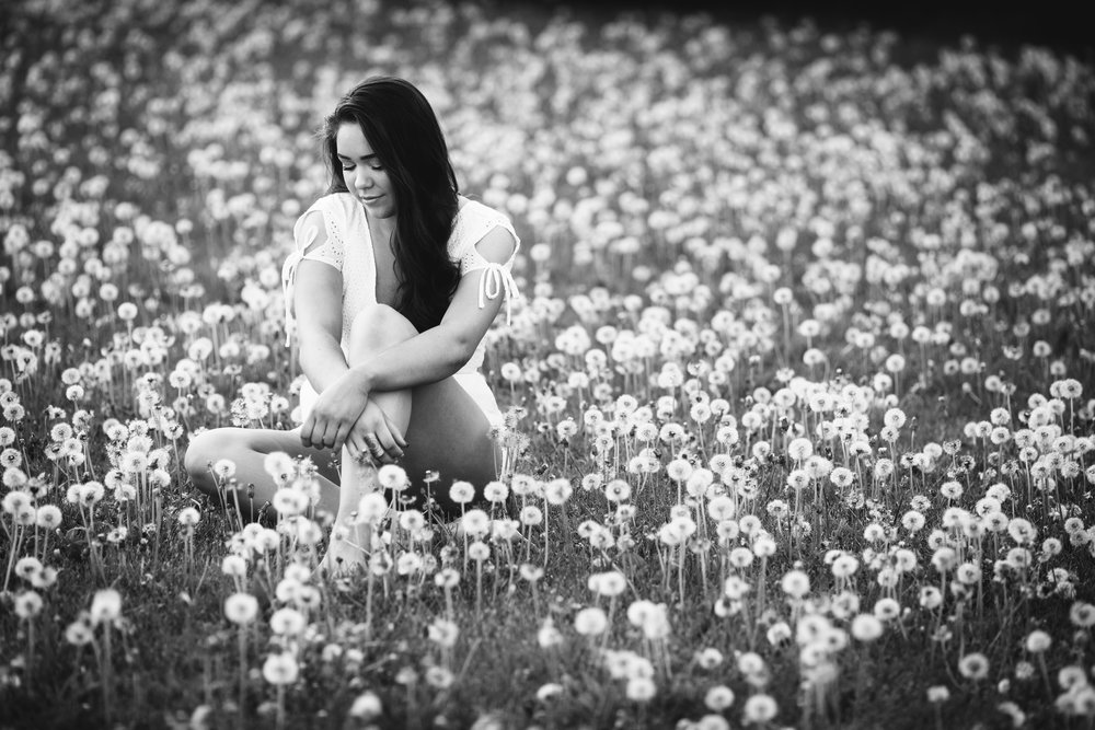 senior-portrait-dandelions-madison-wi.JPG