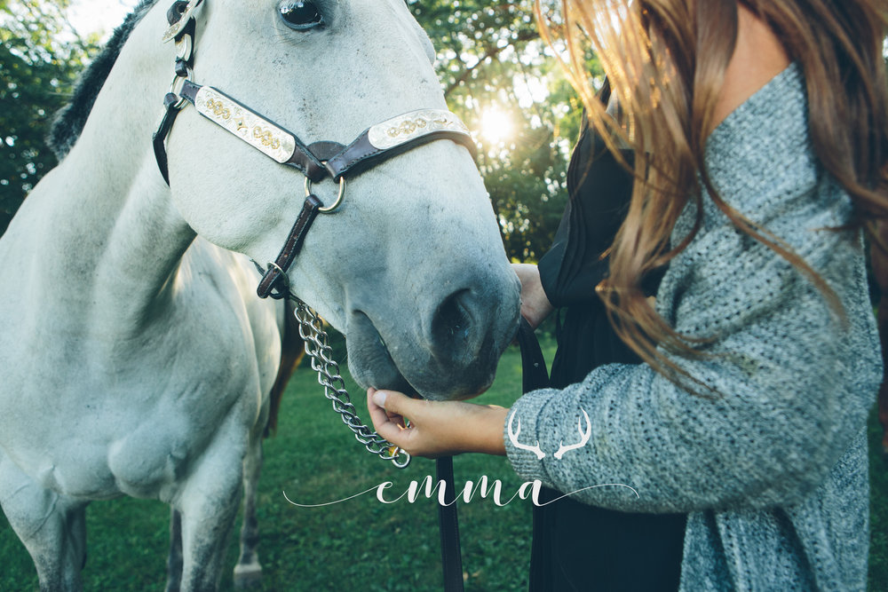 senior-picture-session-with-horse-madison-wi.jpg