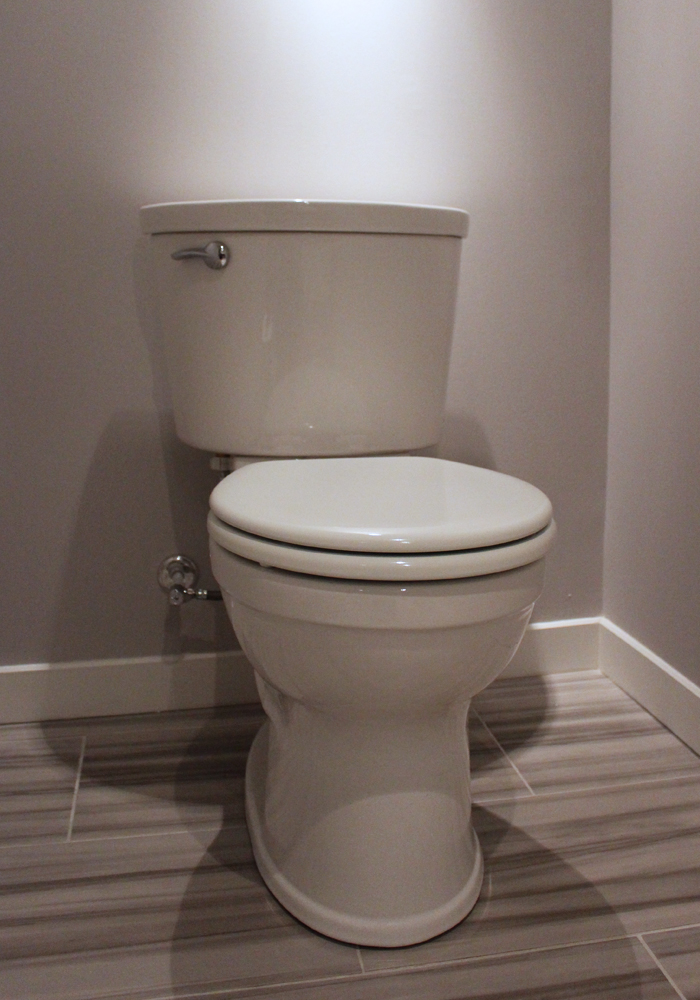 London_Ontario_Plumbing_Toilet_Clog