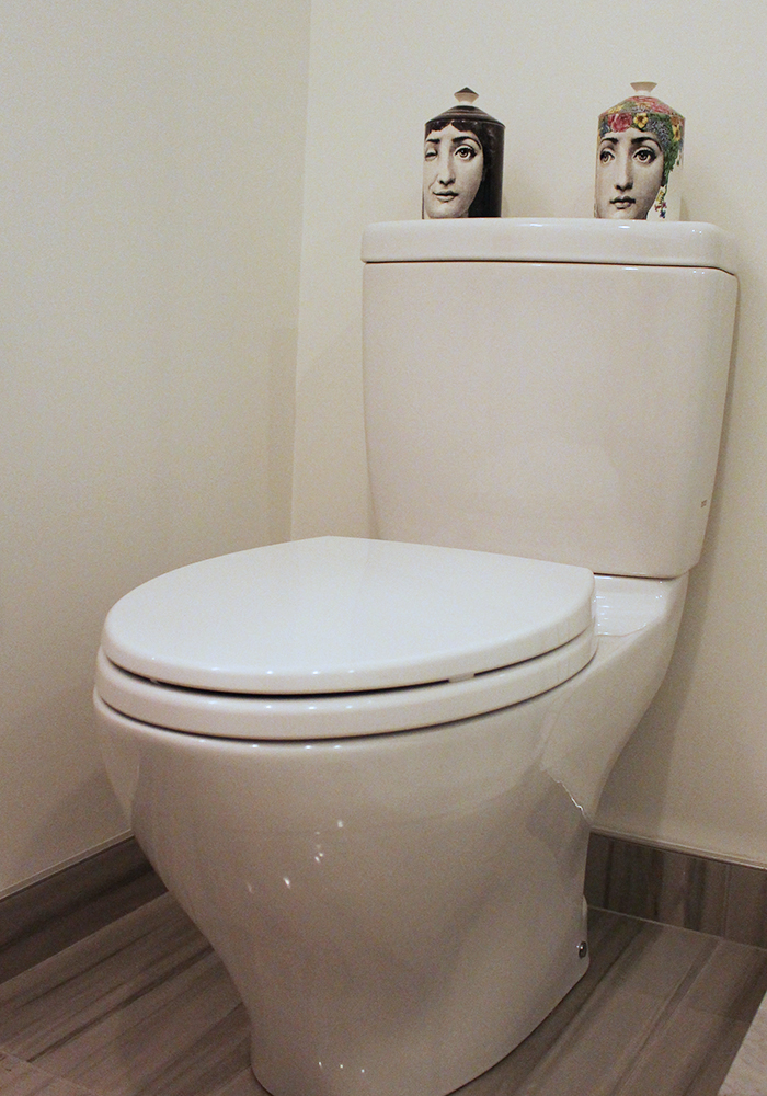 London_Ontario_Plumbing_Bathroom_Toilet