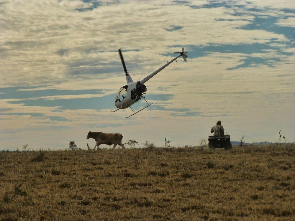 outback5.jpg