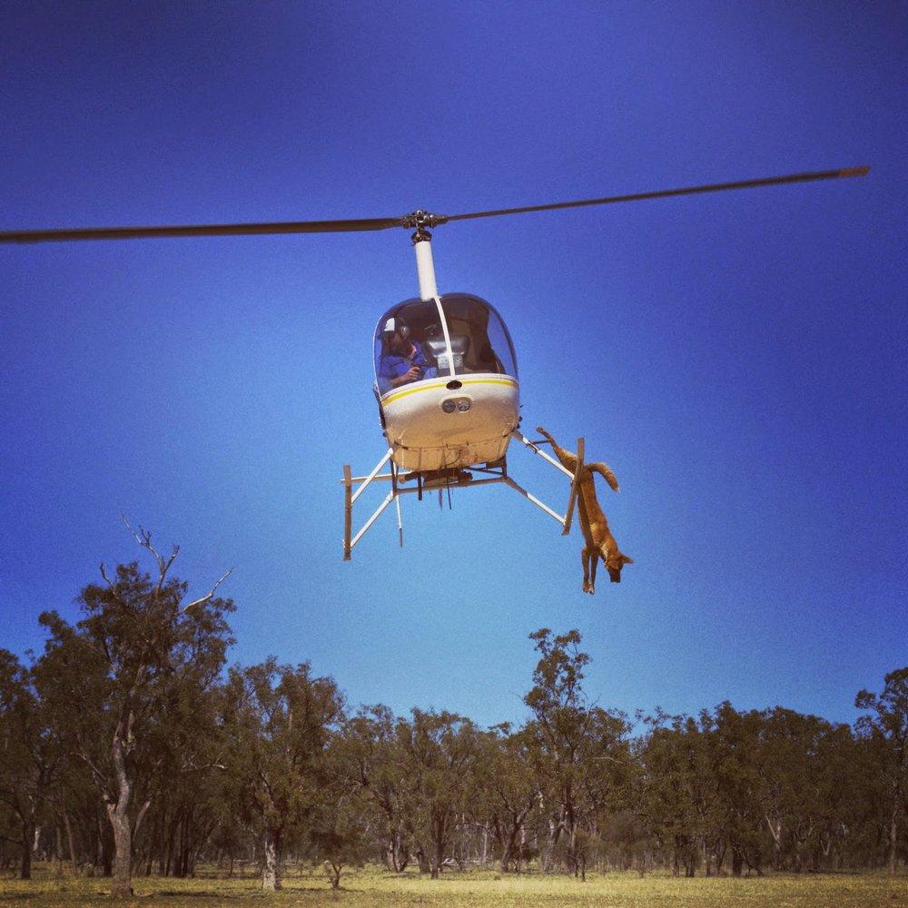 outback11.jpg