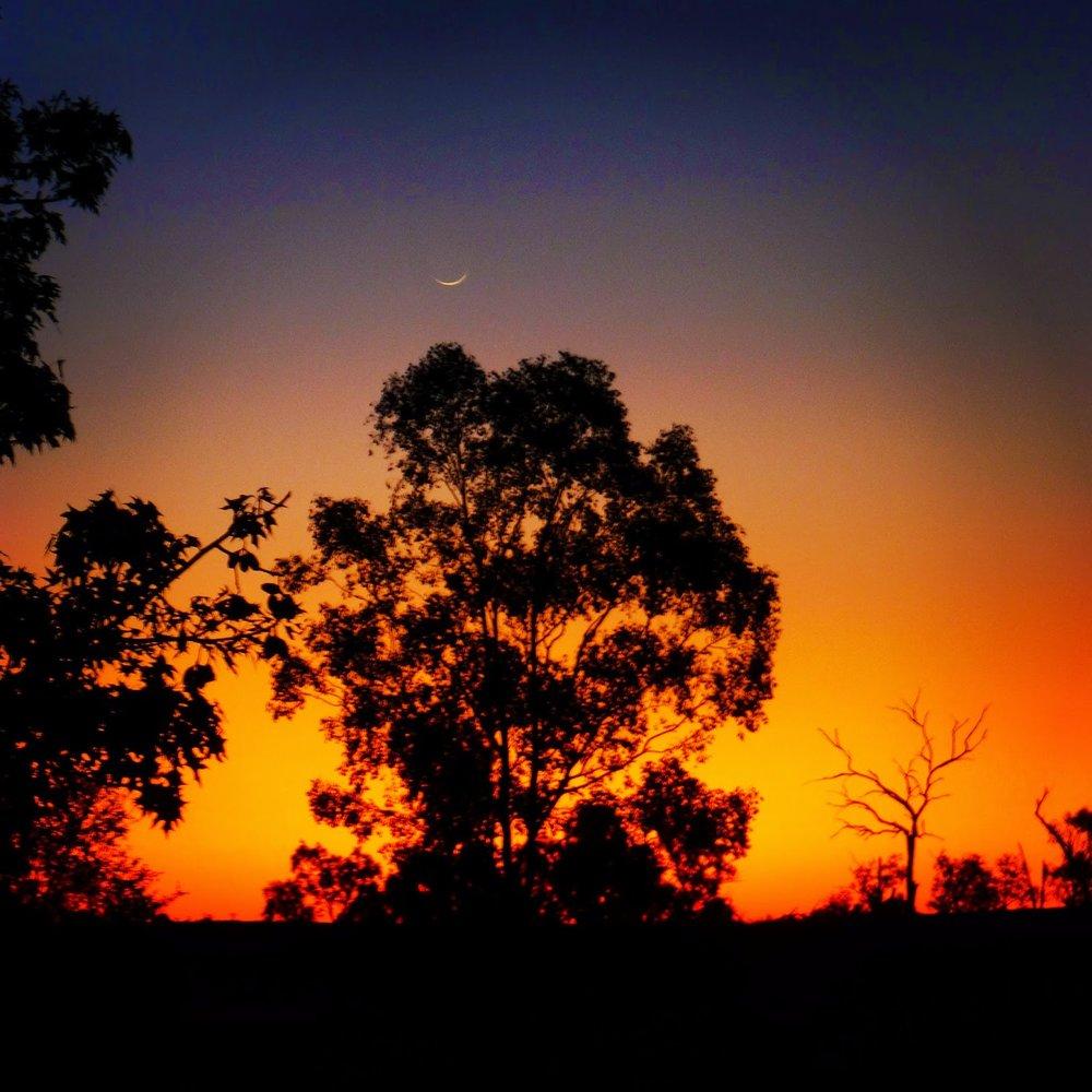 outback12.jpg