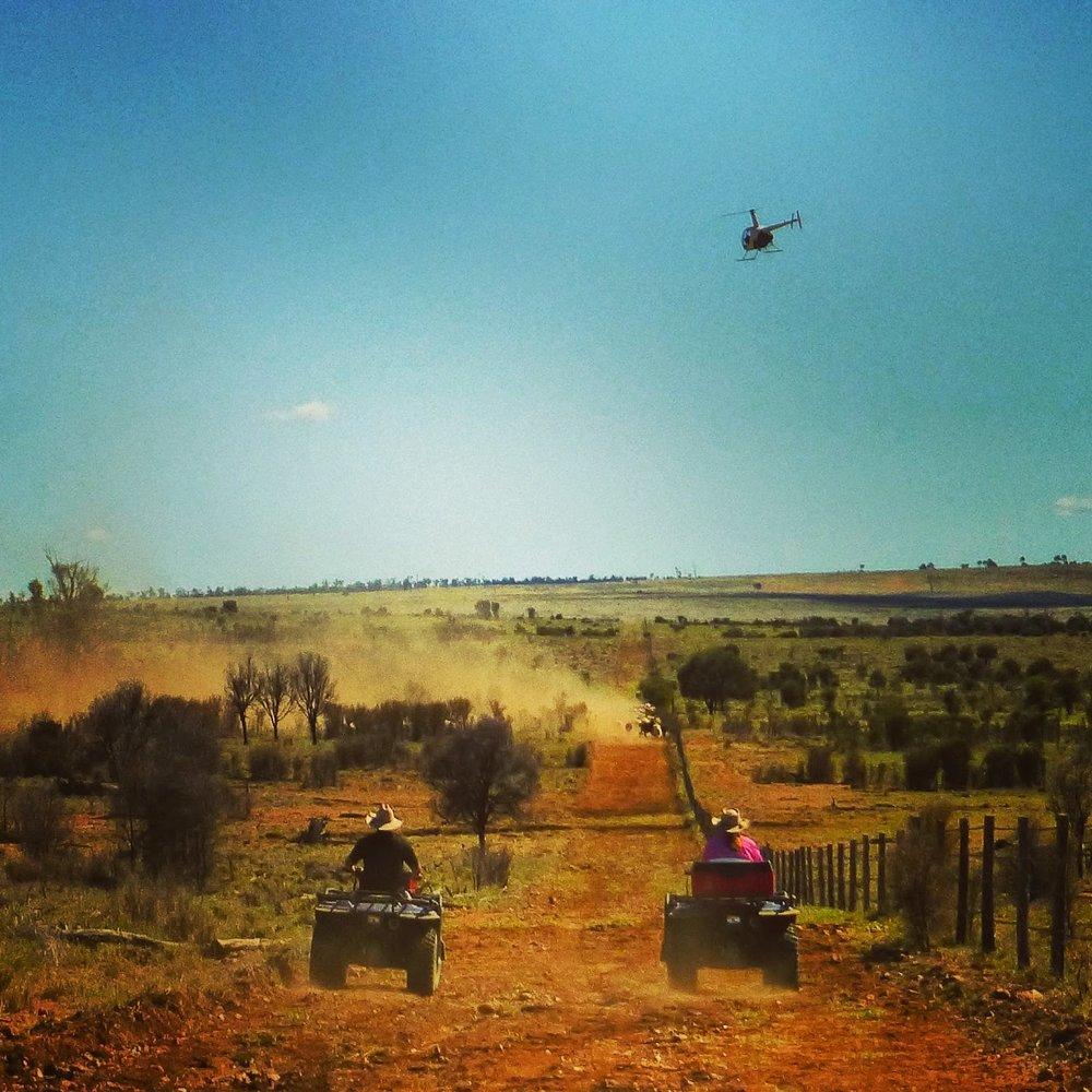 outback15.jpg