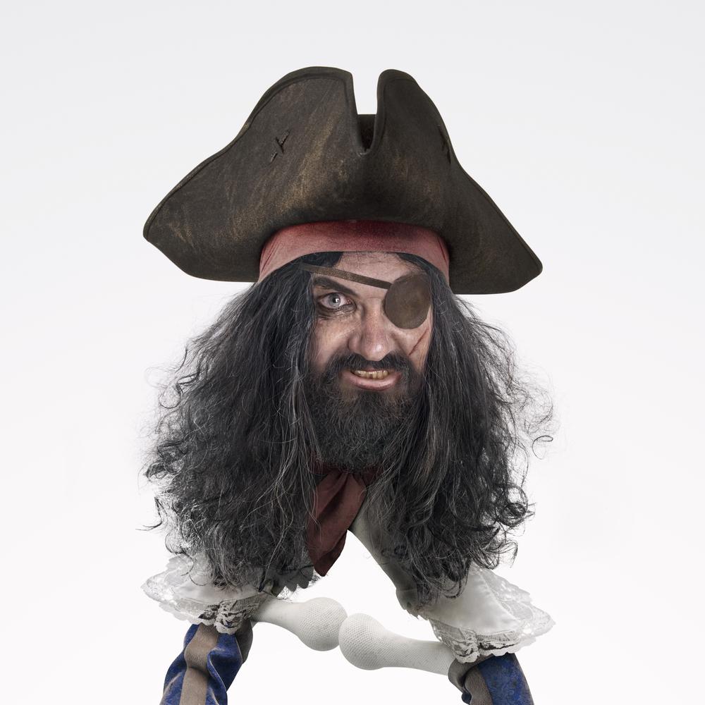 Pirata_dtl1.jpg