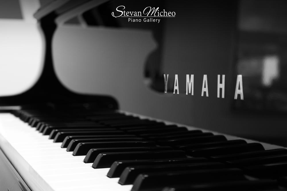 Yamaha-Pronto-2--.png