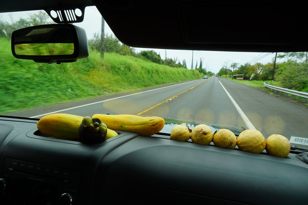 we hit the road with extra long papayas, mangosteen, and guavas toward the waipio valley