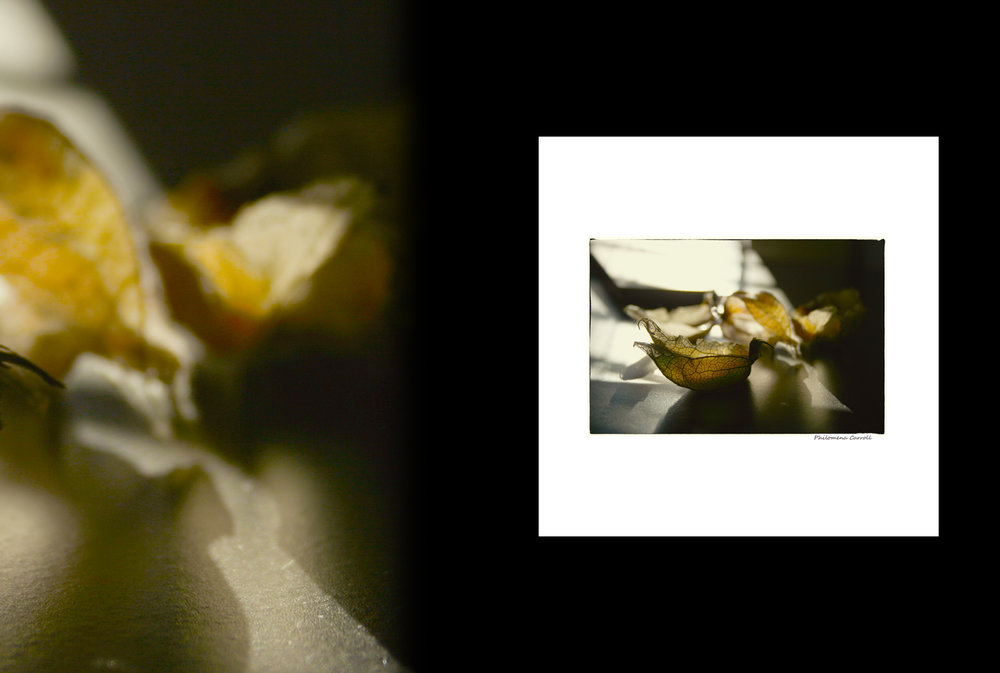 Small Works print series