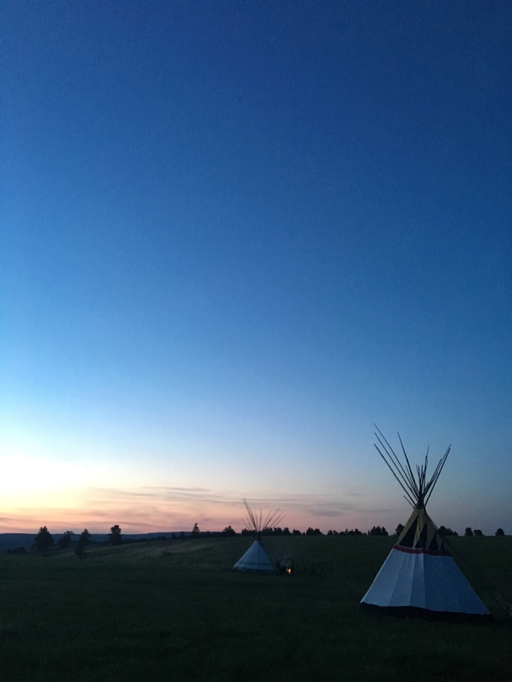 One of Wyoming's five cell towers was located in the next field. I had the best service of the whole trip sleeping in a tipi.