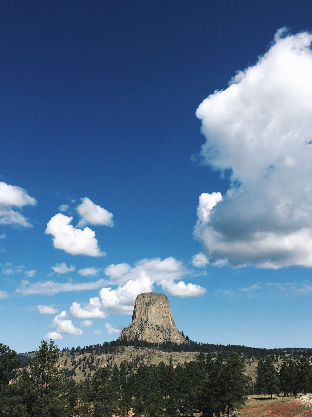 And just down the road from Devil's Tower View restaurant, Devil's Tower! Definitely one of the coolest sights of the trip - partially because  nobody really knows what it is.
