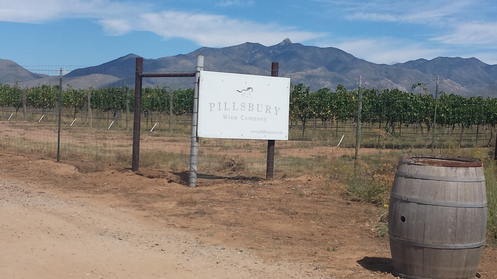 Pillsbury Winery Willcox Arizona Wine Travel