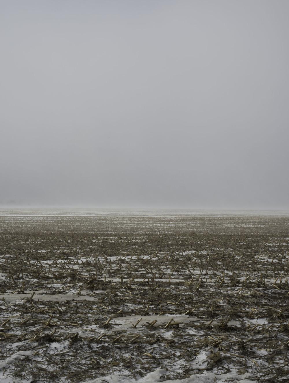 EmptyfieldSD_1.2014_Hruby.jpg