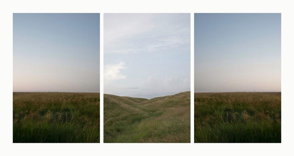 grass final web.jpg