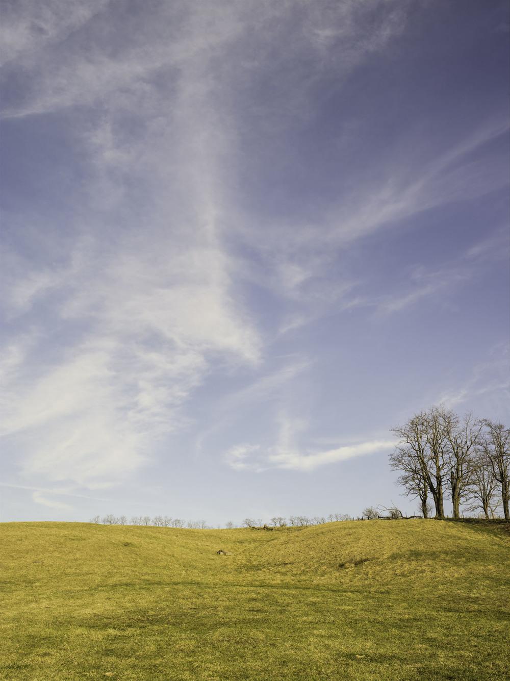 hillside_Legacy.jpg