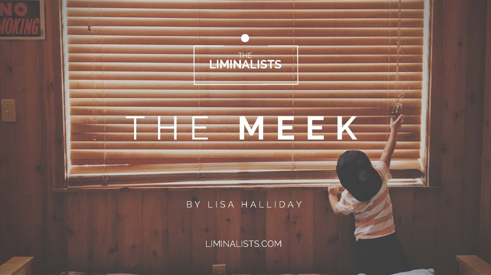 """Blessed are the meek, for they will inherit the earth."" (Matt. 5:5) - The Meek by Lisa Halliday - The Liminalists"