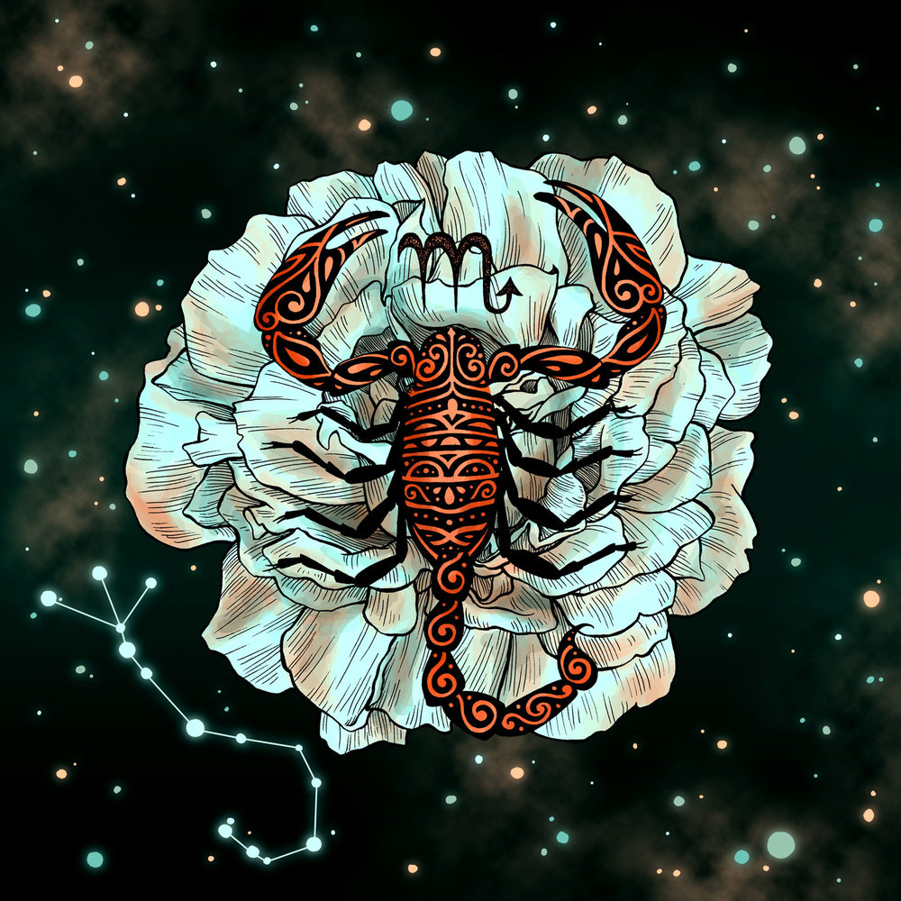 Scorpio  Scorpion and Rose