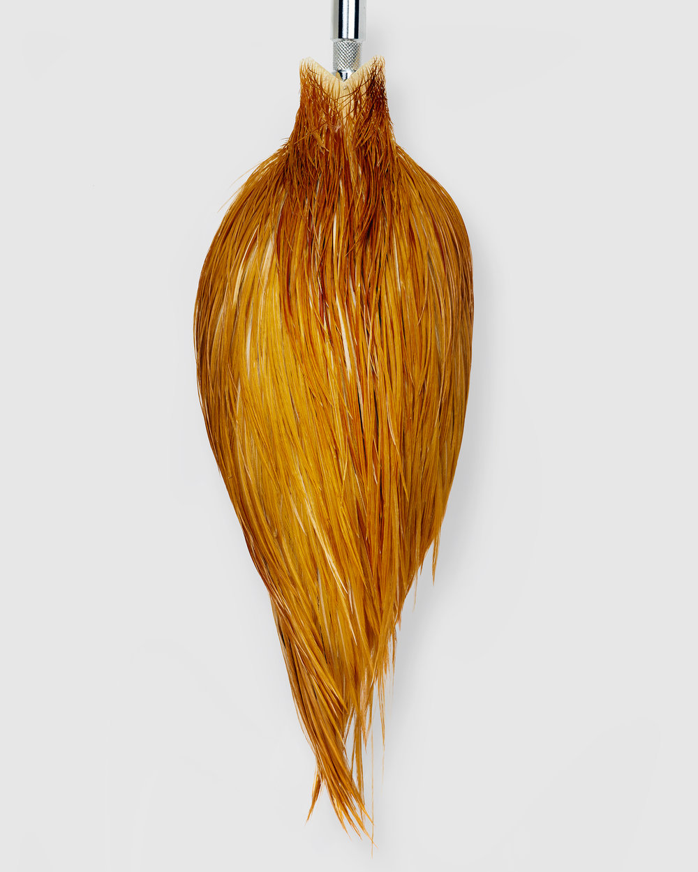 Whiting Farm's Hackle