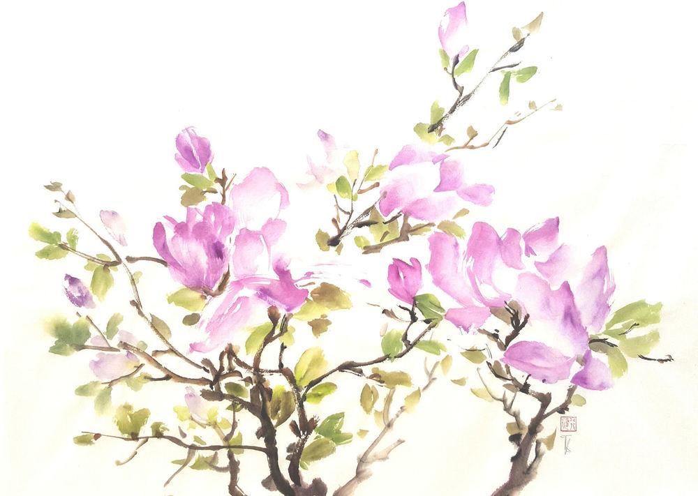 T Jaleel magnolia.jpg