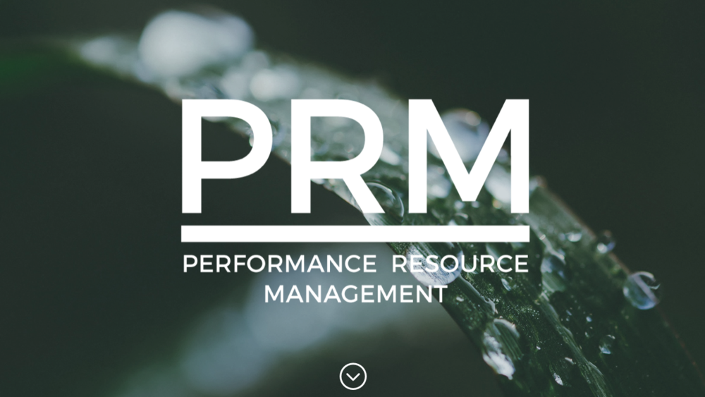 PerformanceResourceManagement.com  — I did the visual branding for PRM and built the site with Wordpress, including a lot of content creation for brand messaging and copy.