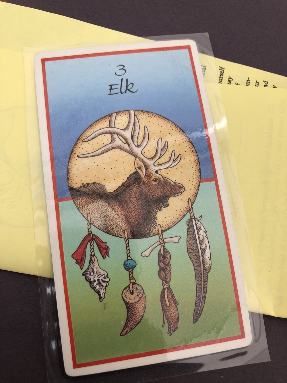heather-molina-elk-medicine-card
