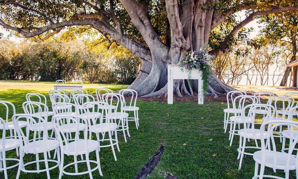 White Bentwood chairs