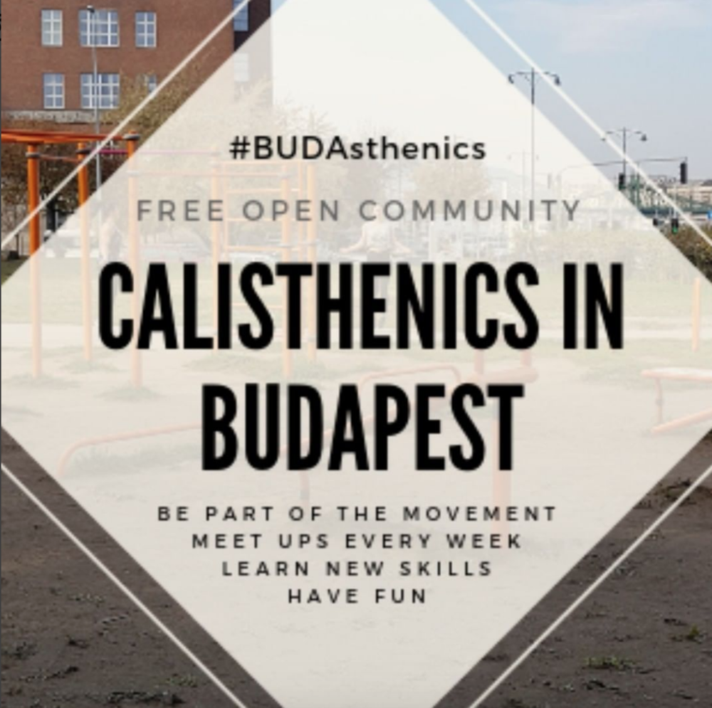 Calisthenics movement - I am a partner in the Calisthenics in Budapest movement which was founded in September 2018. It is a fantastic group that brings people together through fitness and working out in the outdoors. Everybody is welcome to join our group and the best thing about it is its totally free.Find it here: https://www.facebook.com/BUDAsthenics