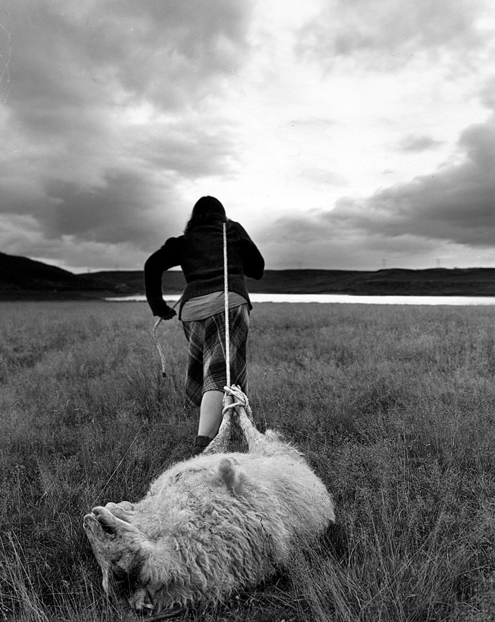 Self Portrait, Pulling a Sheep Carcass, 2014 /  Silver gelatin print / 7 x 9 in (17.8 x 22.9cm) / Edition of 10