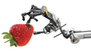 Robot-holding-a-strawberry-FEATURE-300x169.jpg