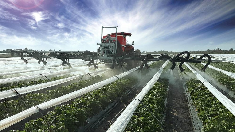 Western Australian strawberry producer, T&L Produce Marketing,  recently utilised Silvan Australia to develop an air-assist spray  solution for its 40 hectare farm at Gingin, north of Perth.    Photo source: Queensland Country Life