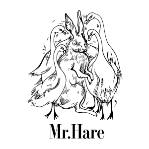 Hub-brand-logo34.jpg