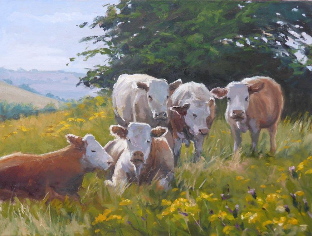 Hadleigh Cows - Oil on Canvas 45cm x 60cm 2015.jpg