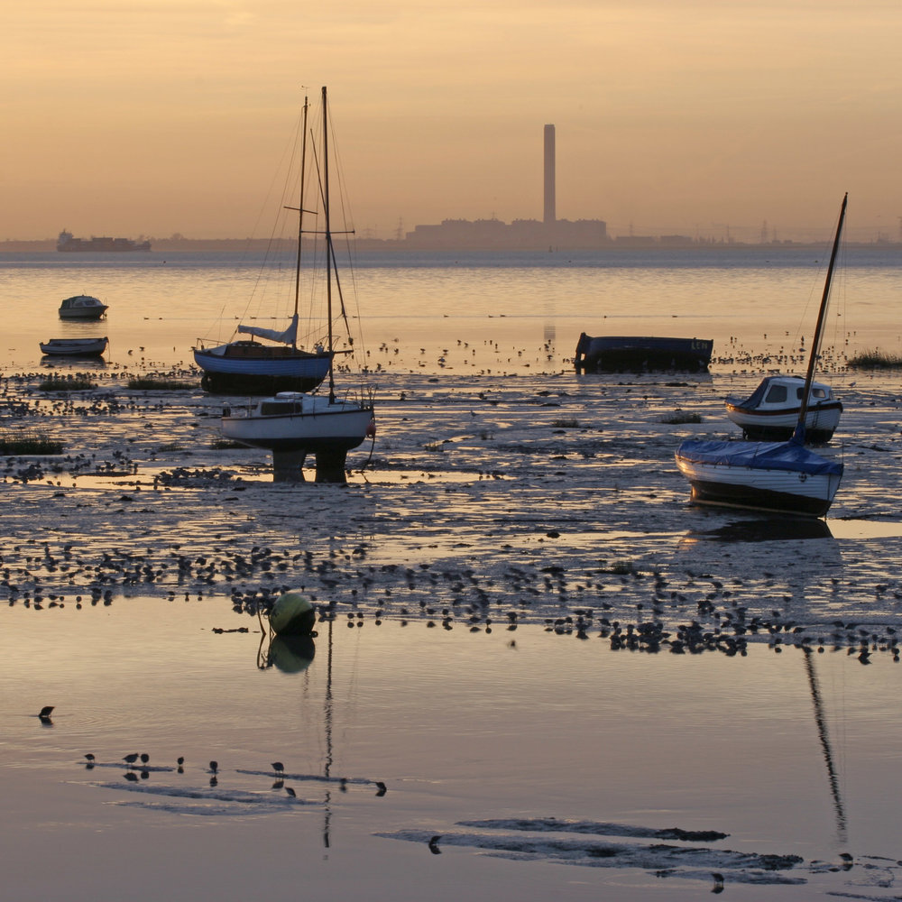 F-58- 053. Estuary Flats Leigh. For Web by Ian James.jpg