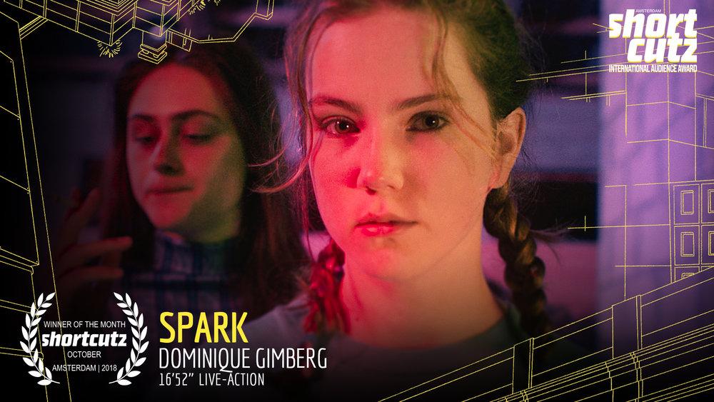 12  Still Laurel  SPARK Live Action  16min 52sec.jpg