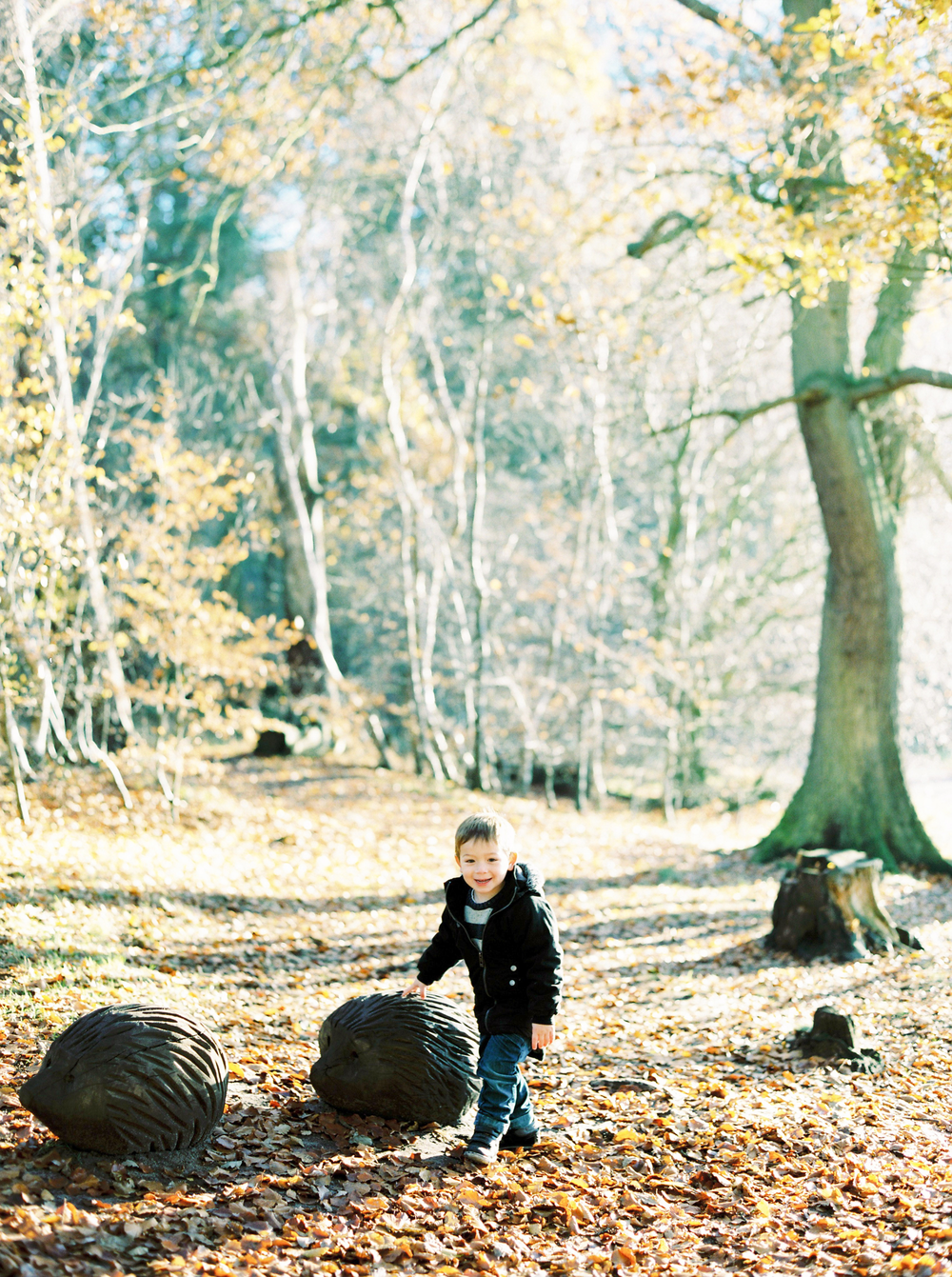 family_photographer_cumbria14.png