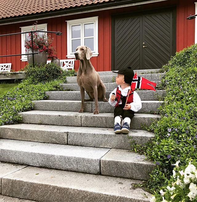 Gratulerer med dagen fra oss på Karlsvik Gård! Vi håper alle har hatt en fantastisk feiring!