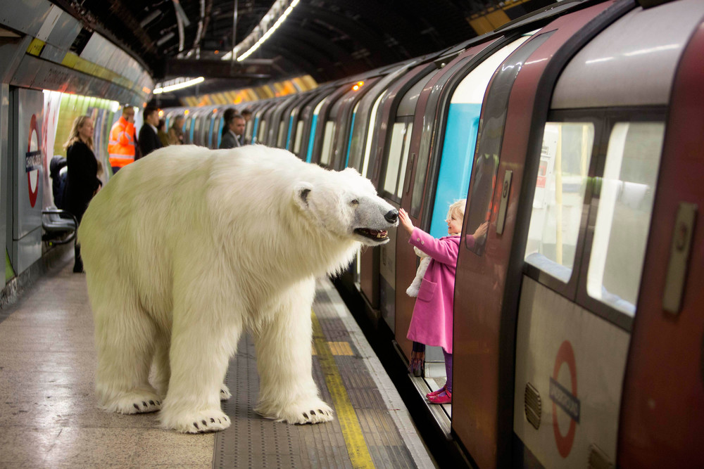 The PR experts at TNR arranged for an animatronic polar bear to roam through London ahead of the launch of Fortitude on Sky Atlantic