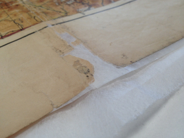 map-conservation11.jpg