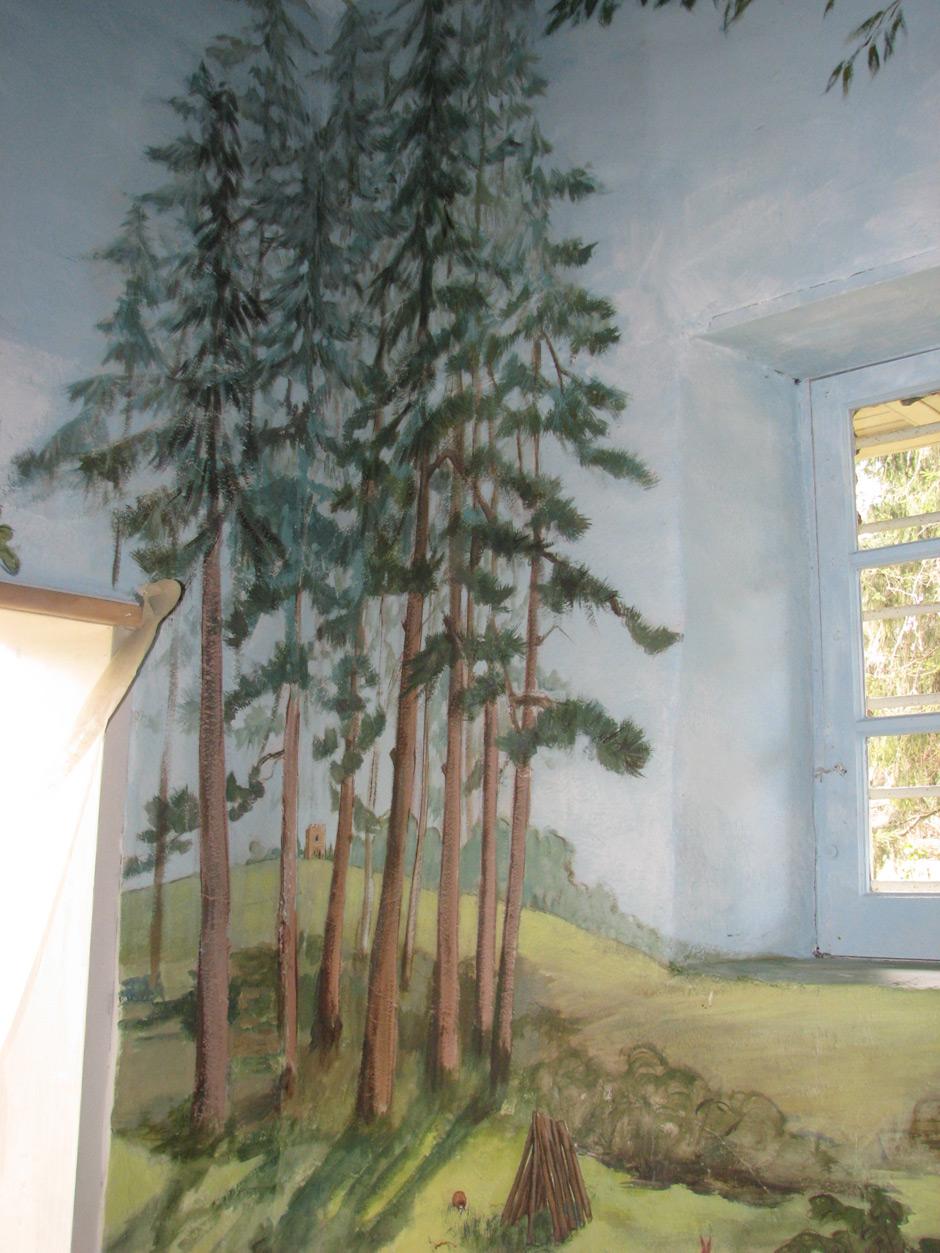 conifers.jpg