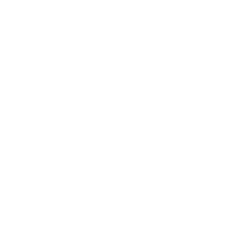 Adapt Graphic
