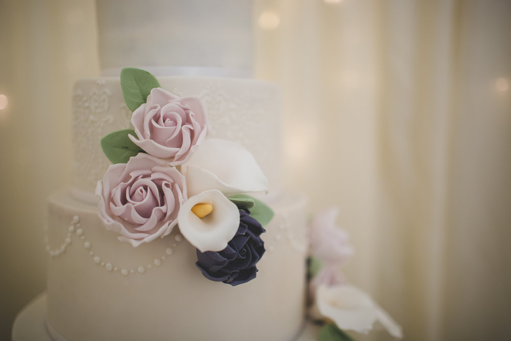 Surrey Wedding Photographer Hedingham Castle086.jpg