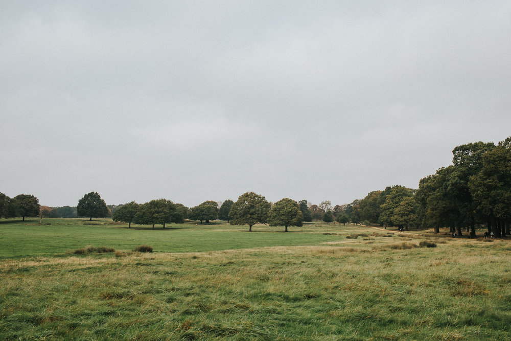 Richmond Park Engagement Shoot0002.jpg
