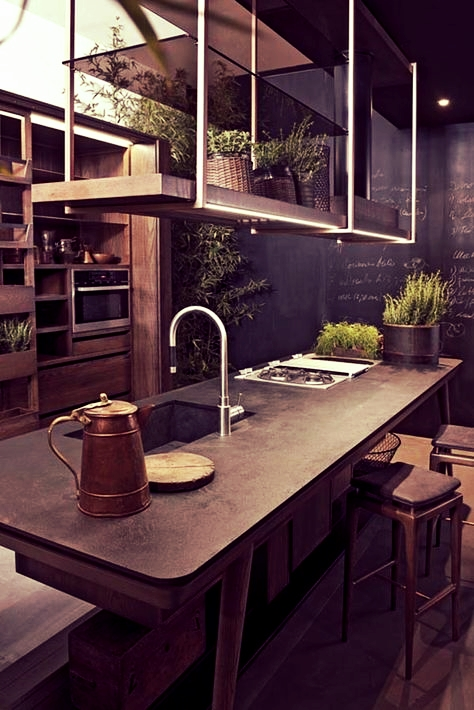 Ultra Modern Kitchen with Herb Garden