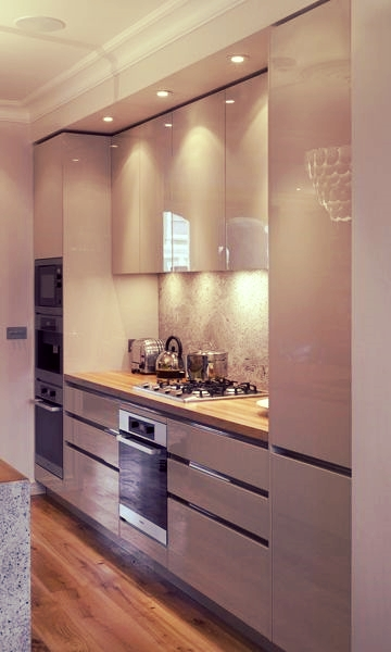 Modern and Contemporary Kitchen