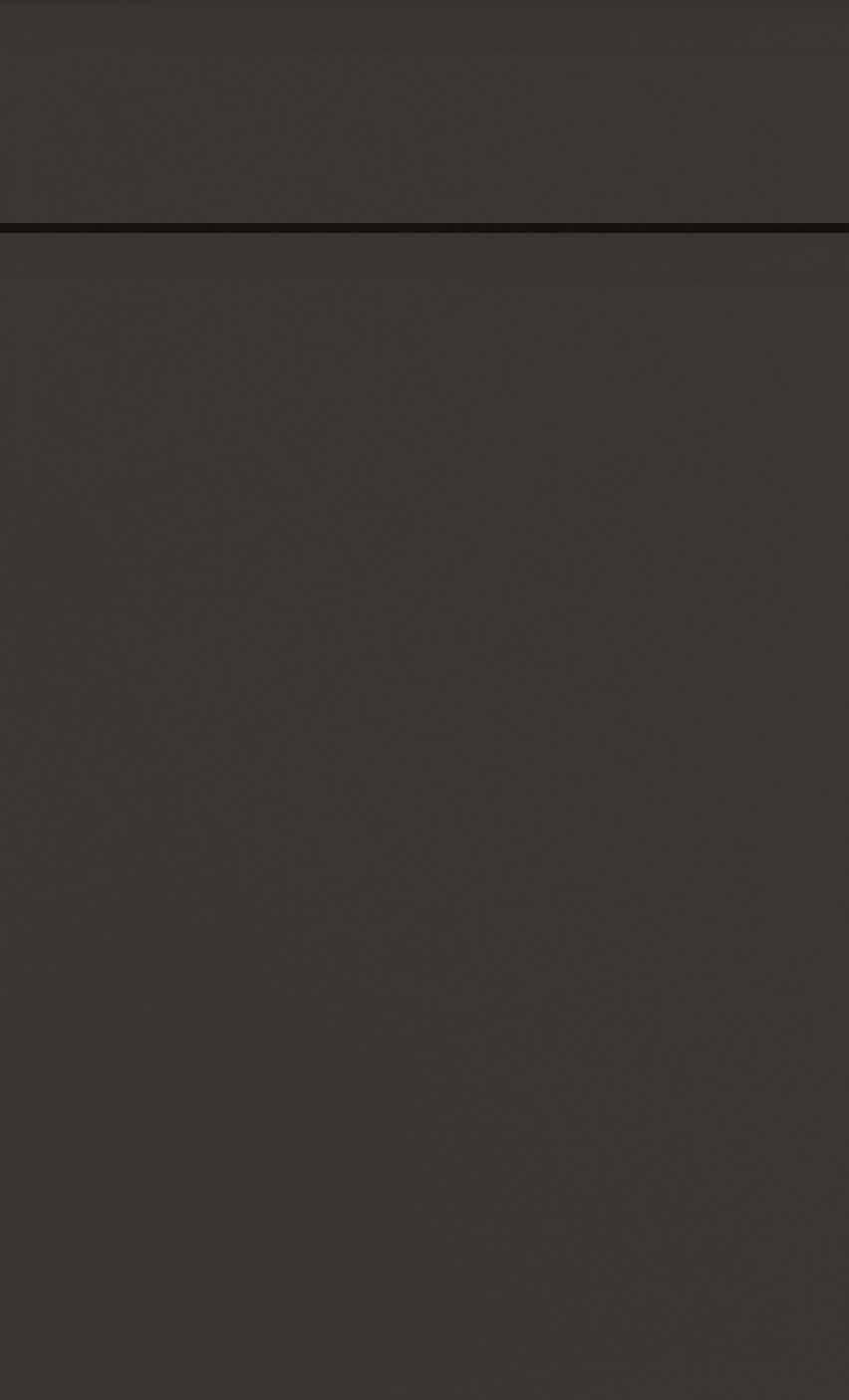 remo graphite_door.5a9c21e70a431a1bca163450972372f6.jpg