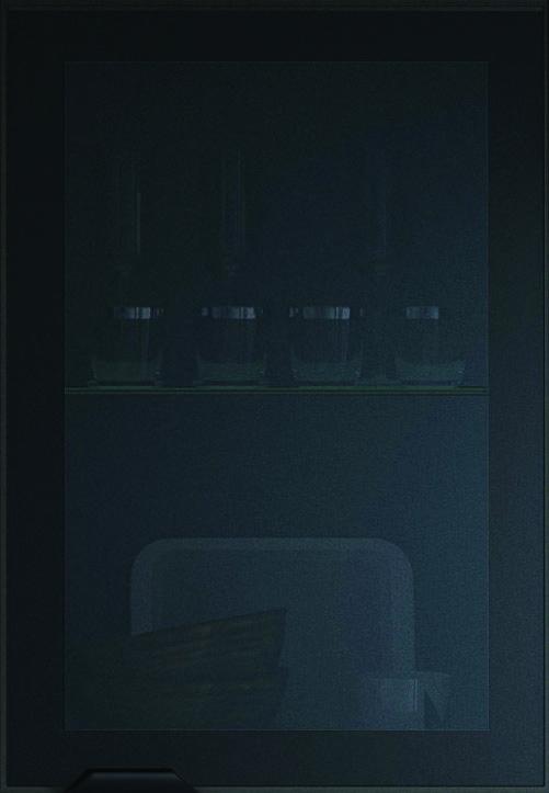 Feature Black Glazed Door details
