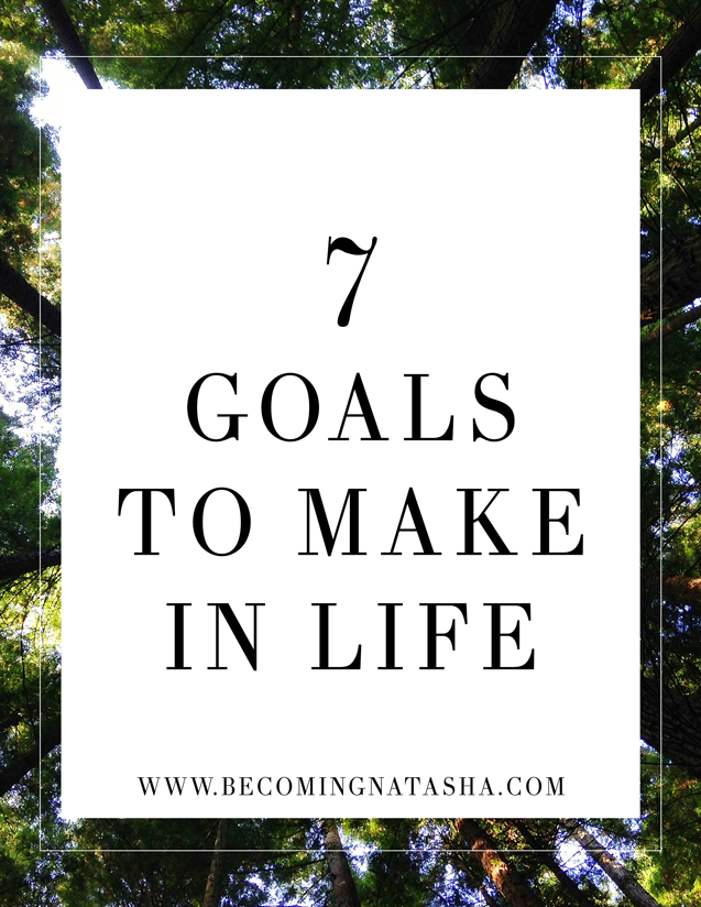 7 Goals to Make In Life