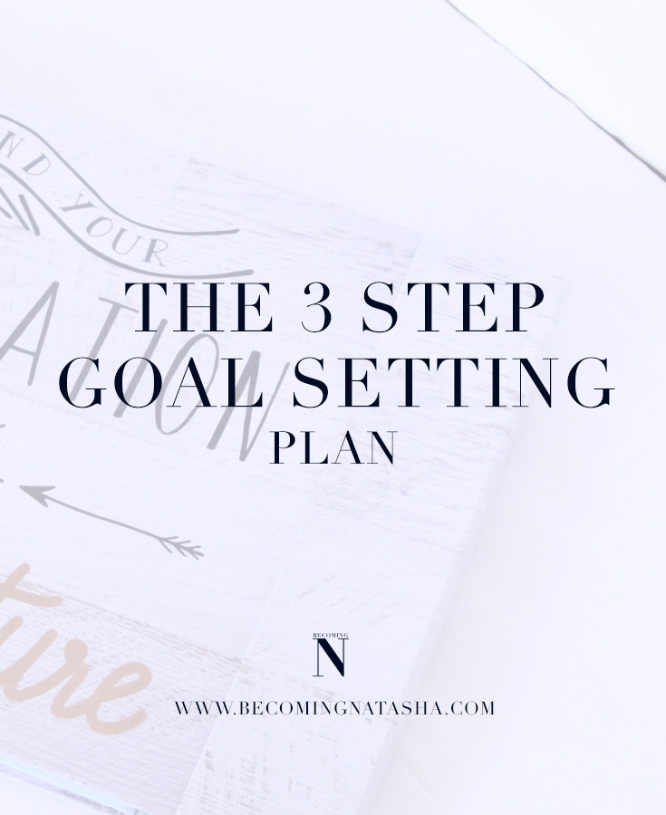 3 Step Plan To Reach Your Goals