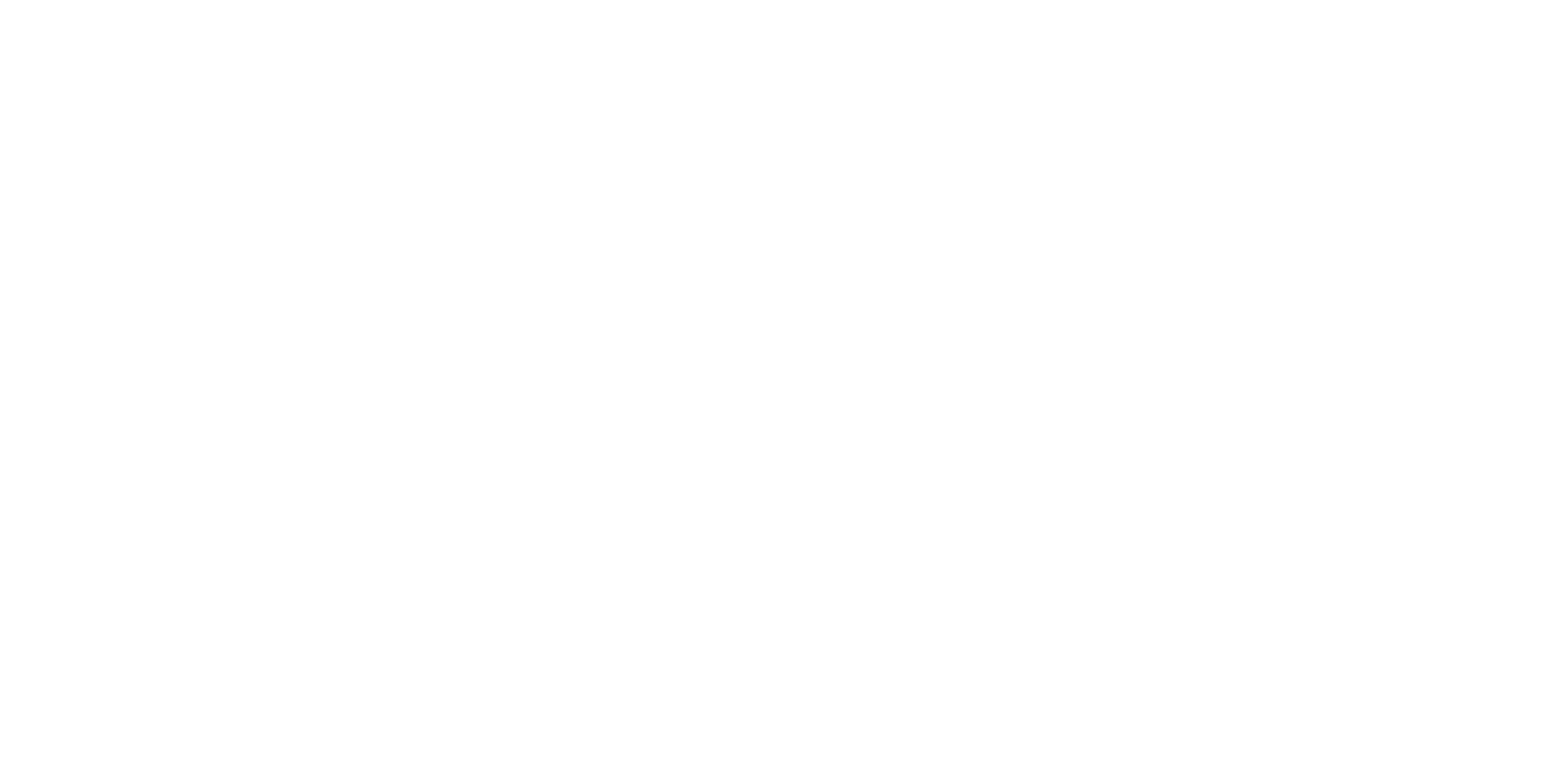 The Irish Mafia